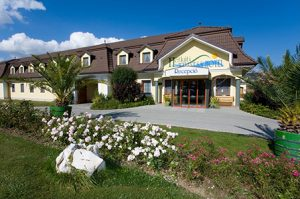 Tizenöt éves a móri Hétkúti Wellness hotel!