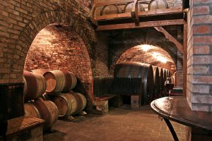 Polgár Pincészet… ahol a borok nem készülnek, hanem születnek!