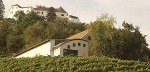 ASchloss Kapfenstein kastélyhotel és étterem, valamint a Winkler-Hermaden bioborászat